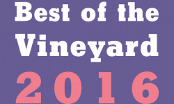 Best of the Vineyard 2016 Party